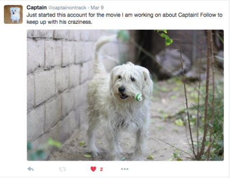 twitter, social media, captain and the greyhounds, first tweet